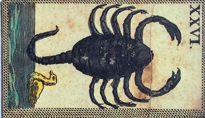 c57a110b3fc0f618760cc82fd1b12f1f--scorpio-quotes-zodiac-scorpio
